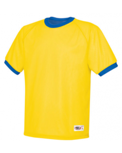 Adult Mini Mesh Reversible Jersey by High 5 Sportswear Style Number 22580