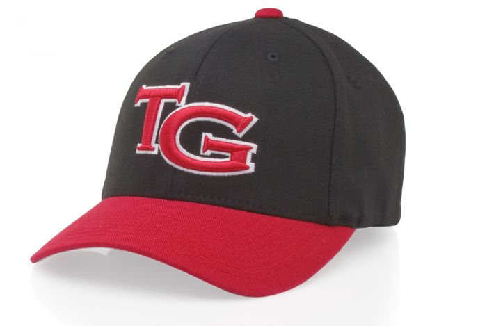 afb627cc52431 185 Pro Cotton FlexFit Hat by Richardson Caps