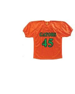 Football Game Jersey with Stretch Panel by Martin Sports | Style Number: FGA12 , FGY11